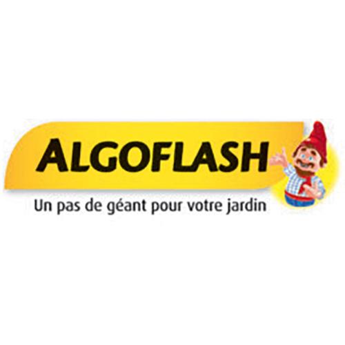ALGO-FLASH