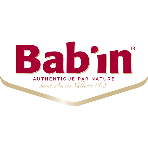 Bab_in