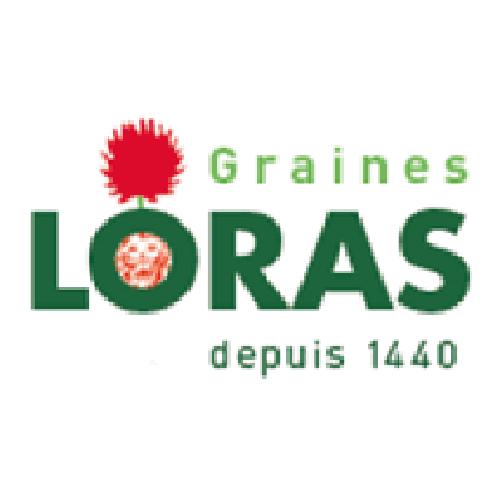 graines loras